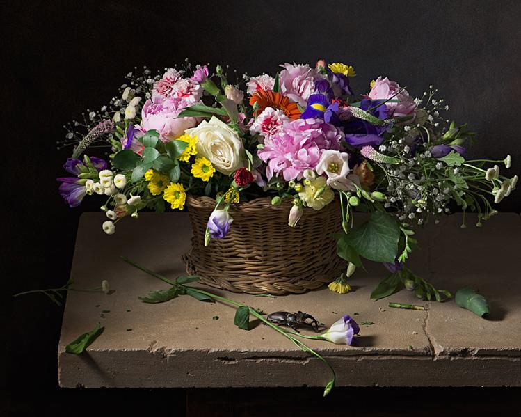 Nature morte nature morte photographique de henri peyre et catherine auguste - Initiatives fleurs et nature ...